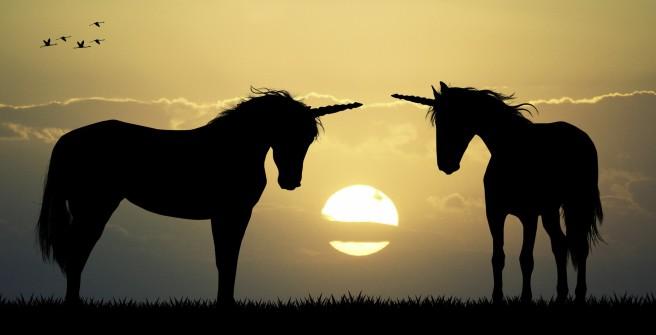 unicorns-e1445611915468
