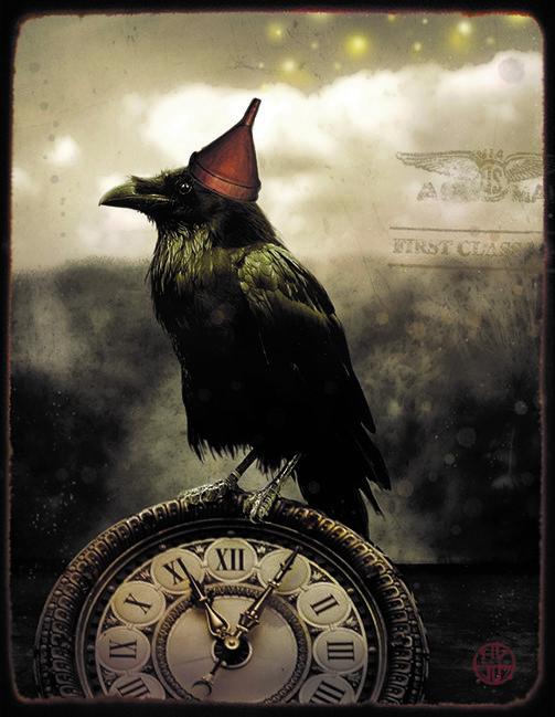 NY Raven